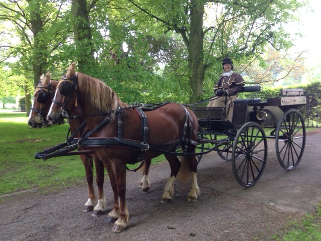 The Wagonette horse drawn carriage