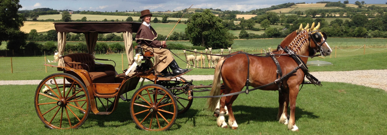 Cross Country Carriages - Horse Drawn Carriages for Weddings - Northamptonshire